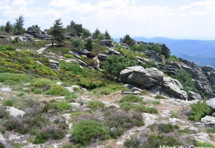 mont du Caroux